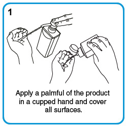 Apply a palmful of the product in a cupped hand and cover all surfaces.